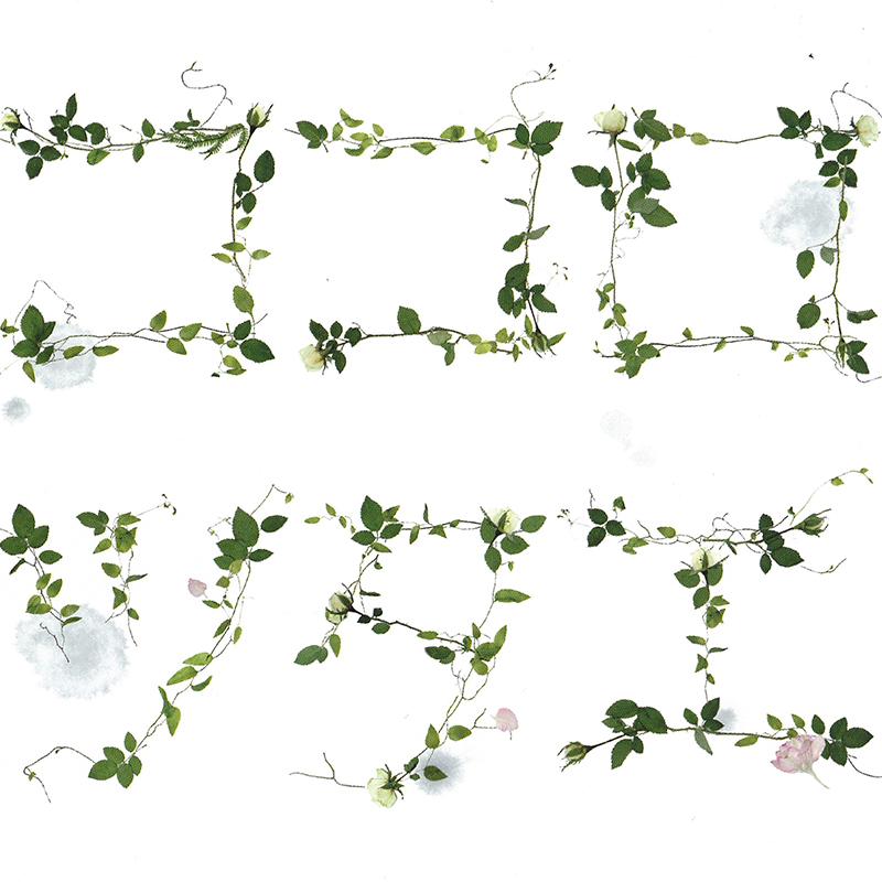 夏川りみ『ココロツタエ』 (作詞・作曲:谷村新司) Album 「彩風の音」に収録 Victor (VICL-61733)